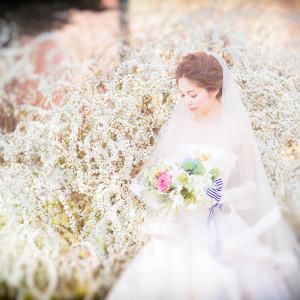 wedding yui